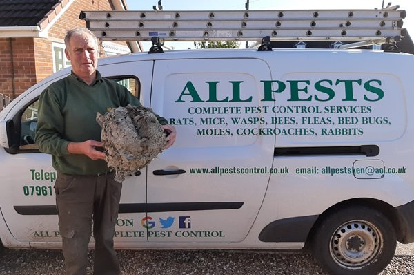man holding a wasp's nest